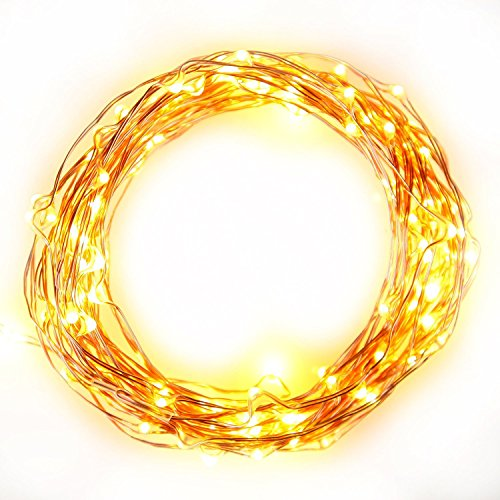 Brightech - The Original Starry Solar String Lights by Brightech - Warm White LED's on a Flexible Copper Wire - 20ft LED Light String Set with Solar Panel (String Lights Fruit compare prices)