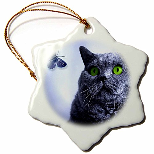 3dRose Blue and The Butterfly Russian Blue Cat with A Fantasy Art Feeling. - Snowflake Ornament, Porcelain, 3-Inch (orn_172988_1) (Russian Blue Cat Ornament compare prices)