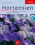 Image de Hortensien: Die besten Arten und Sorten Pflanzen und Pflegen