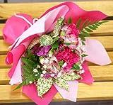 【送料無料】【母の日遅れてごめんね】(5/14からのお届け)カーネーションと季節のお花のブーケ・花束(生花) (ピンク系) FL-MD-807
