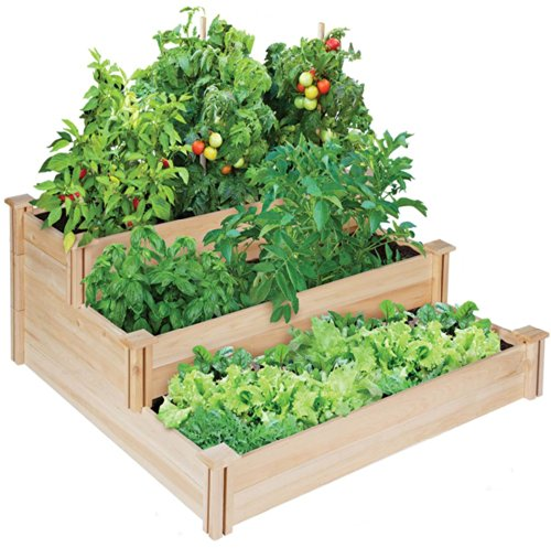Beginners Herb Garden Ideas