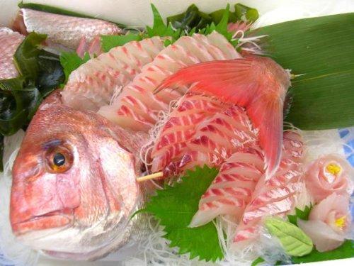 天然真鯛(1尾 1kg 日本海産)刺身にしてお届け