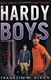 Franklin W. Dixon Children of the Lost: Book One in the Lost Mystery Trilogy (Hardy Boys)