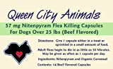 Queen City Animals 57 mg Nitenpyram Beef Flavored Flea Killing Capsules for Dogs Over 25 Pounds. 14 Count. The Same Active Ingredient As the Major National Brand. (Not for Little Dogs)