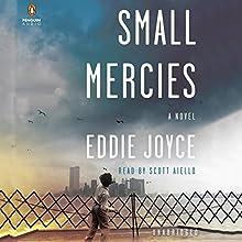 Small Mercies: A Novel (       UNABRIDGED) by Eddie Joyce Narrated by Scott Aiello