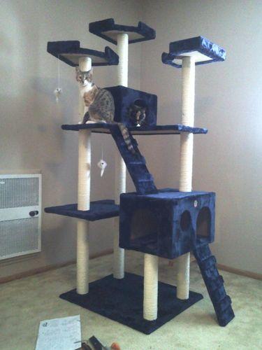 Go pet club cat tree 50w x 26l x 72h blue - Trepadores para gatos ...