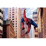 Poster Super Hero Spider Man 3D Wallpaper 971