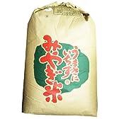 宮城県産つや姫 玄米30kg 24年産 検査1等米