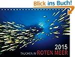 Tauchen im Roten Meer 2015 (Tischkale...