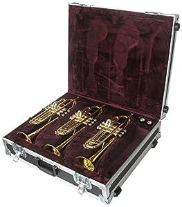 anvil solidbody electric guitar case foam lined black musical instruments. Black Bedroom Furniture Sets. Home Design Ideas