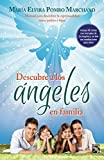 img - for Descubre a los  ngeles en familia (Spanish Edition) book / textbook / text book