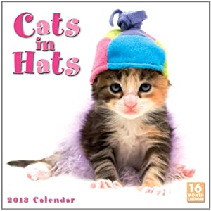 cats in hats wall calendar