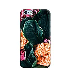 Blue Throat Flower And Leaves Printed Designer Back Cover/Case For Apple iPhone 6 Plus