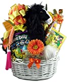 Gift Basket Village The Ultimate Kids Basket, Deluxe Gift Set, 9 Pound