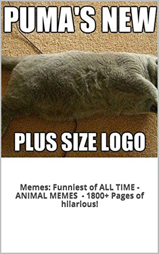 Best Funny Memes Of All Time : Best animal memes of all time imgkid the image