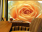 'THE ORANGE ROSE' Giant Photo Wallpaper Wall Mural