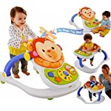 Fisher Price 4 In 1 Monkey Entertainer, Multi Color