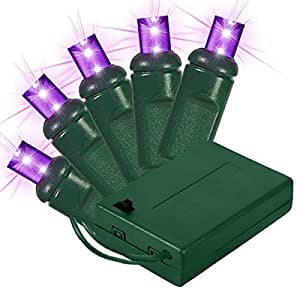 Amazon.com : 20 Purple LED Mini Christmas Lights - Green Wire - Battery Operated - 10ft : String ...