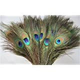 KAYSO Natural Peacock Feathers 10-12-inch, Pack of 30pc