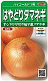 サカタのタネ 実咲野菜3971 ハイゴールド1号 はやどりタマネギ