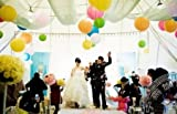 選べる 多彩 な カラー 紙提灯 紙ちょうちん 直径 30cm 10個 入り パーティー 祭り イベント 結婚式 装飾 に 白 赤 緑 黄色 青 紫 オレンジ ピンク 星型夜光ステッカー セット (オレンジ)
