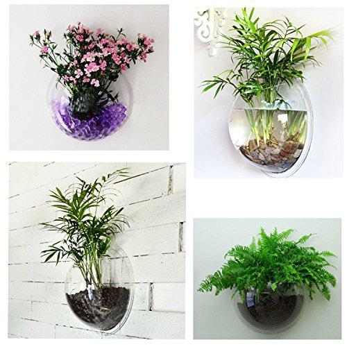Mini vaso da parete, in acrilico trasparente