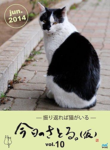 今日のさとる。(仮) 〜振り返れば猫がいる〜 vol.10