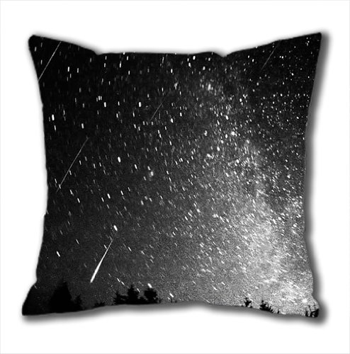 Leonids Meteor Shower pillow case