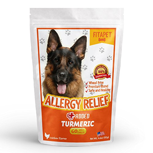 fitapet-allergy-relief-for-itchy-dogs-with-turmeric-omega-3-quercetin-and-bromelain-60-soft-chews
