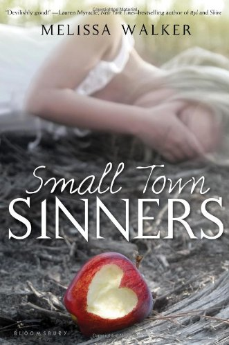 Cover of Small Town Sinners