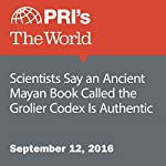 Scientists Say an Ancient Mayan Book Called the Grolier Codex Is Authentic | David Leveille