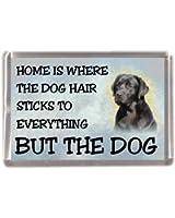 "Black Labrador Retriever Fridge Magnet ""HOME IS WHERE THE DOG HAIR STICKS TO EVERYTHING BUT THE DOG"""