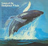 echange, troc Various Whales - Songs of the Humpback Whale