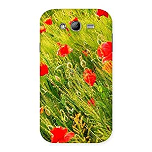 Beauty Flowers Farm Back Case Cover for Galaxy Grand Neo