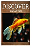 img - for Gold fish - Discover: Early reader's wildlife photography book book / textbook / text book