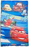 DisneyPixar Cars 2 8220Track Burn Slumber-bag