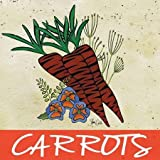 Carrots by Welsh, Shanni - fine Art Print on PAPER : 40 x 40 Inches