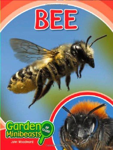 Bee (Garden Minibeasts Up Close)