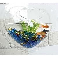 Wall Mount Hanging Beta Fish Bubble Aquarium Bowl Tank (Heart) from KAZE HOME
