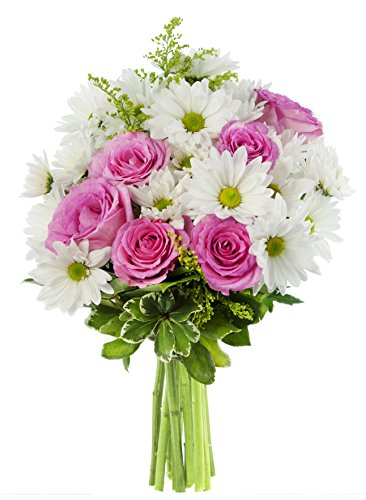icing-on-the-cake-bouquet-of-white-daisies-and-pink-roses-accented-with-yellow-solidago-asters-and-l