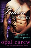 img - for Taken By Storm book / textbook / text book
