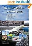 Braunkohlesanierung: Grundlagen, Geot...