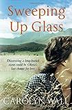 Carolyn Wall Sweeping Up Glass