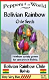 Bolivian Rainbow Heirloom Hot Chile Pepper Seeds - 30 Seeds