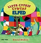 Llyfr Cyfrif Cyntaf Elfed/Elfed's Fir...