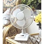 "Lloytron 9"" 2-Speed Oscillating Desk Fan"