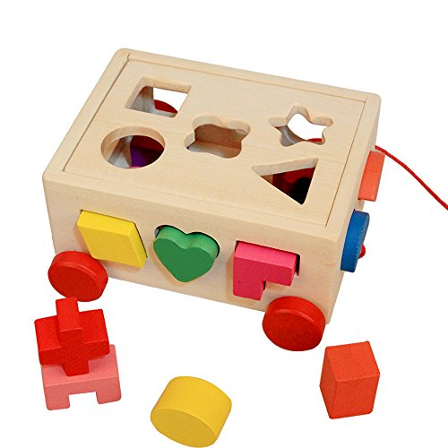 Darius 15 Holes Intelligence Box Shape Matching Blocks , Wooden Material, Baby Children's Educational Toys
