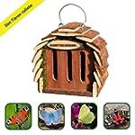 Gardigo Butterfly House, Butterfly Fe...