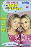 Mary-Kate Olsen Bye-bye Boyfriend (Mary-Kate and Ashley # 14)(Two of a Kind Diaries)