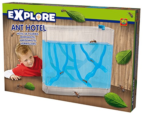 ses-creative-25009-explore-hotel-pour-fourmis